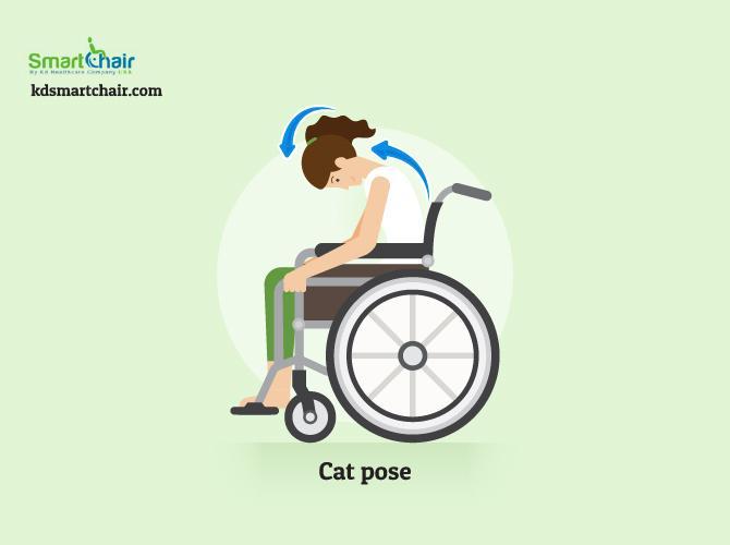 wheelchair yoga cat pose